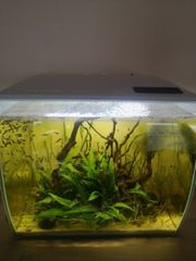 Fluval Flex Aquarium Futterabdeckung schwarz
