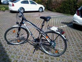 Herren-Fahrräder - Herren Trekkingrad