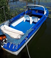 Motorboot Ibis II
