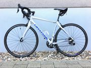 Rennrad Cannondale Synapse Women