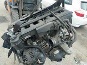 Motor M54b30 x5 e53 Bmw