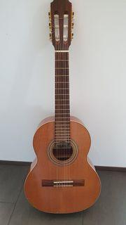 Gitarre mit umfangreichem Zubehör