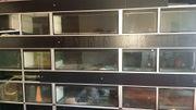Aquarien Zuchtanlage bzw Verkaufsregal