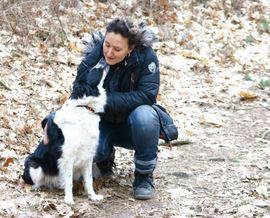 Tierbetreuung - Spezialbetreuung in der Tierpension Bennstedt