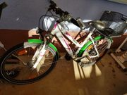 Fahrrad Pegasus 24 Zoll