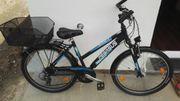 Fahrrad Marke Pegasus Ananti RH
