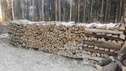 Buche Brennholz 1mtr lang ofenfertig