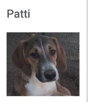 Patti Chancle suchen ihre eigenen