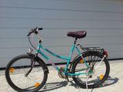 Damen Mountainbike CENTURION
