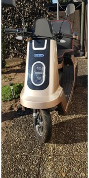 E-Roller - Trike -