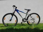 Mountainbike Marke Scott 24