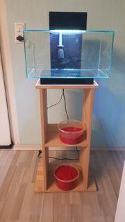 Fluval Edge 2 0 - Aquarium