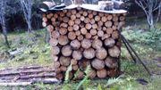 brennholz kaminholz fichte tanne