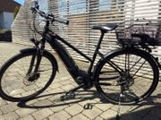 E- Bike E-Horizon 6500 Damen