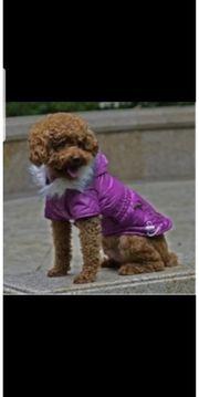 Modische Reißverschluss Jacke für Hunde