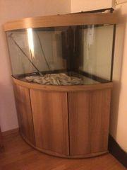 Schönes neuwertiges Eck-Aquarium Marke Juwel