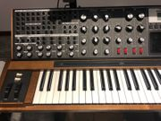 Moog Voyager XL Synthesizer TOP