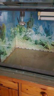 Terrarium für Reptilien 120 x