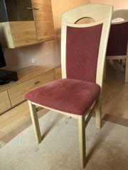6 Stühle weinrot Buche