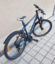 Bulls Fahrrad MTB Neuwertiger Zustand