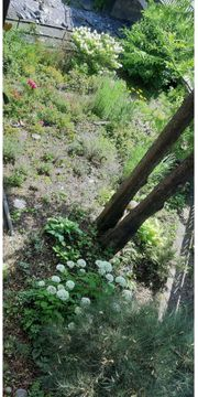 Garten für Hobbygärtner
