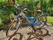Yazoo Bike 2 4 24