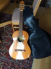 Akustikgitarre für Anfänger