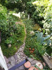 HERRLICHER Schatten Halbschatten Garten