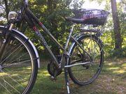 Pegasus Damen Fahrrad