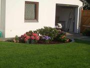 Garten renovieren