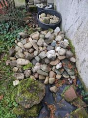 Flusssteine große Flusskiesel zu verschenken