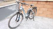 Damen E-Bike Bosch Active plus