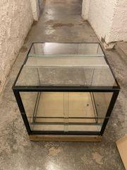 Dendrobaten Terrarium Neu 4 Stück