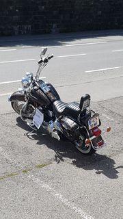 Sehr schöne Harley Davidson Softail