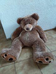 Großer Teddybär zu verschenken