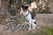 Rocio möchte das 1x1 erlernen