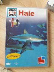 DVD Haie
