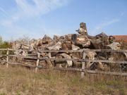 Brennholz kostenlos