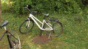 Damen-Fahrrad LAKES