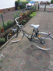 Damon Fahrrad 28 z 6