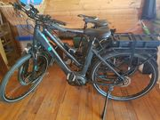 Verkaufe Damenfahrad E- Bike