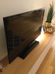 Samsung Full-HD TV 42 Zoll