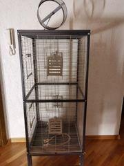 Vögel Käfig zu verkaufen