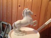 Porzellan Pferd