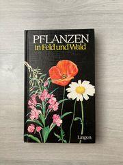 Buch Pflanzen in Feld Wald