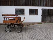 Aufgabe des Pferdesports