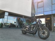 Harley Davidson Sportster Iron 1200