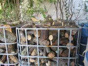 Brennholz Buche Eiche aus der