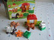 Lego Duplo 10522 Tiere Schaf