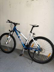 Fahrrad Scott